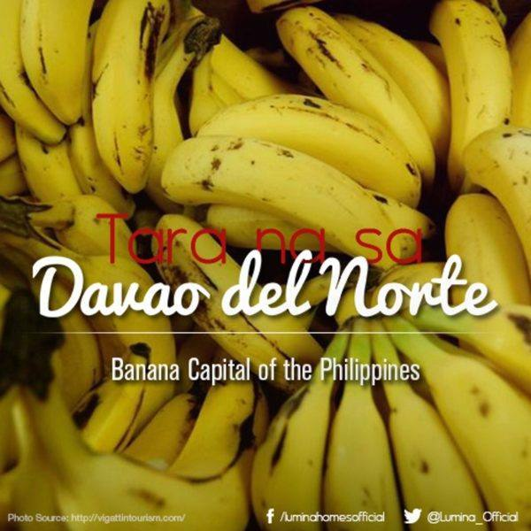 Auro Banana chips -banana Davao