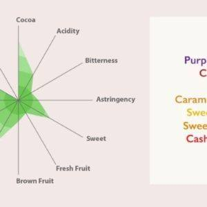 Auro Mana - tasting diagram