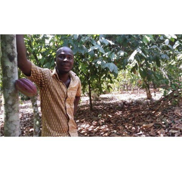 Morin - Ivory coast - KOADODUE - aid