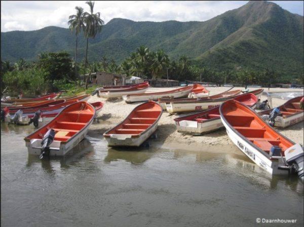 Morin Venezuela Chuao 70 - photo [1]