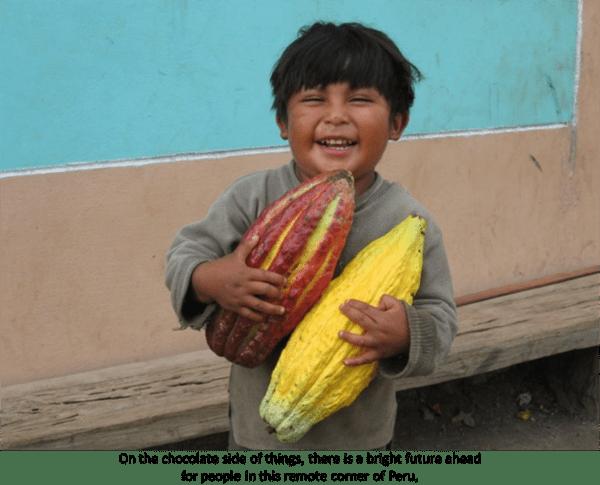 Original Beans Piura - Cacao Growers Son