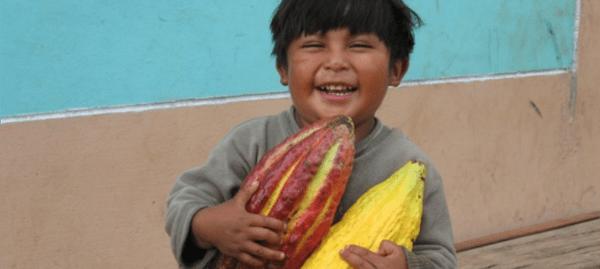 Cacao Growers Son, Piura (Custom)