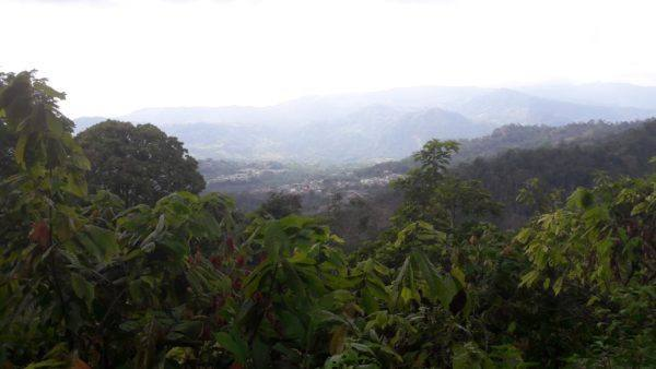 Chocolate Story in Colombia - surrounding