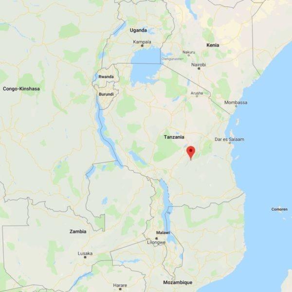 Mesjokke - swinging sunrise - Mbingu Tanzania