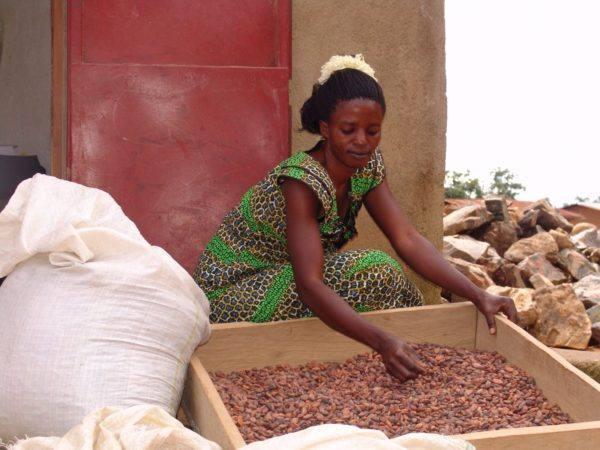 Original Beans Virunga - Kavira Sugusu Janne, Cacao Storekeeper @Oicha, grading beans