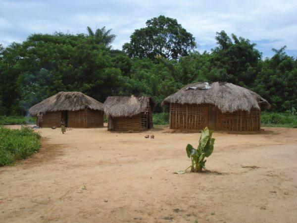 Original Beans Virunga - village